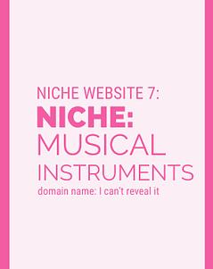 Niche Website 7 - Musical Instruments - 2